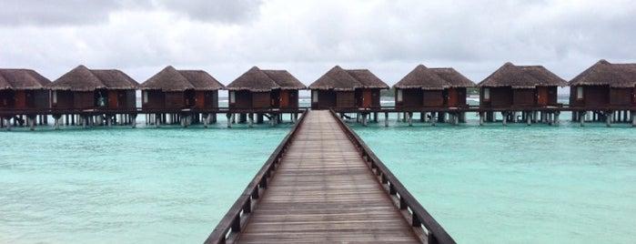Sheraton Maldives Full Moon Resort & Spa is one of Maldives - The Sunny Side of Life.