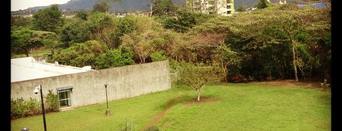 Escuela de Enfermería is one of UCR.
