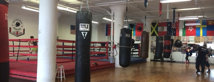 Sam Colonna Boxing, MMA & Fitness is one of Michelle 님이 좋아한 장소.