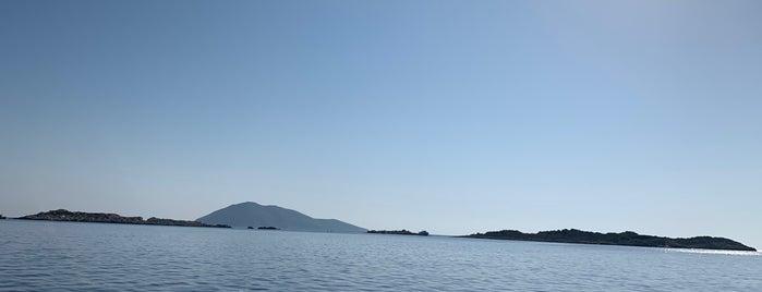Pina Reef Dive Spot is one of Kaş & Kalkan.