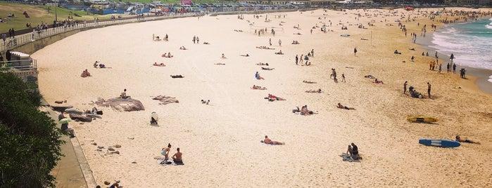 Bondi Beach is one of Ketil'in Beğendiği Mekanlar.