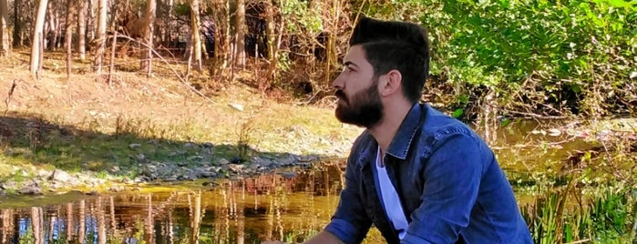 Amasya is one of Ersin'in Beğendiği Mekanlar.