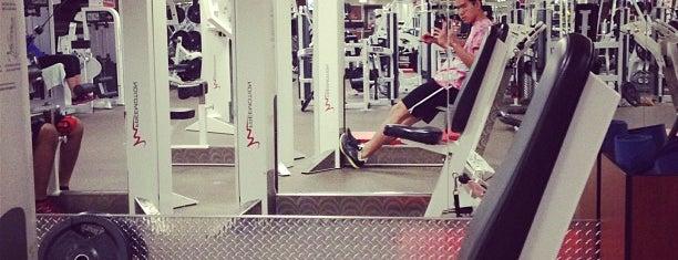 GoodLife Fitness is one of Orte, die Bobbie gefallen.