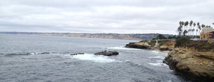 La Jolla Coastal Walk Trail is one of Favorite Haunts Insane Diego.