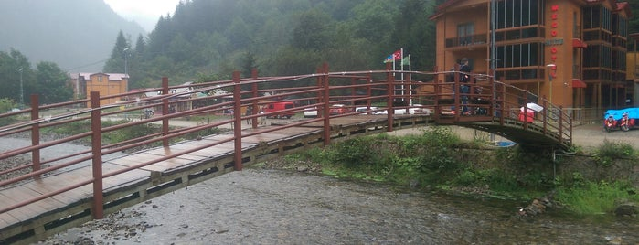 Aşıklar Köprü is one of RİZE.