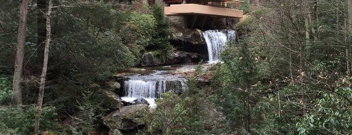 Fallingwater is one of Silene'nin Beğendiği Mekanlar.