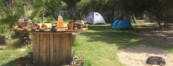 Andriake Camping is one of Kamp Mekanları.