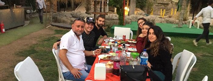 Ozi'nin Bahçesi (Eymir) is one of Angara Life.