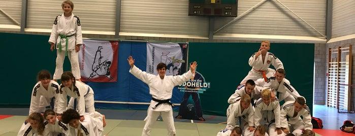 Sport Vlaanderen Oordegem is one of Vrije tijd.