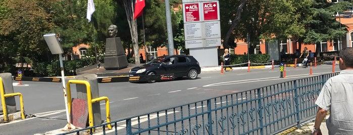 İstanbul Çapa Tıp Fakültesi Cerrahi Bilimler Genel Cerrahi is one of Eda 님이 좋아한 장소.