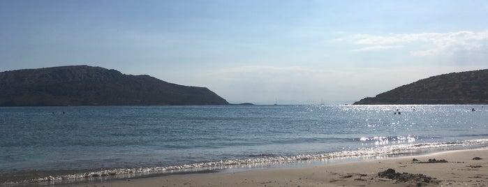 Χάρακας is one of Athens Beach.