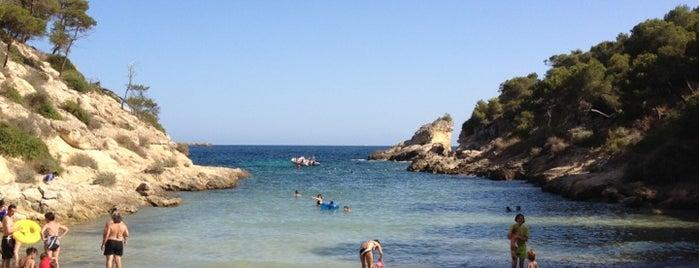 Cala Falcó is one of Playas de Mallorca.