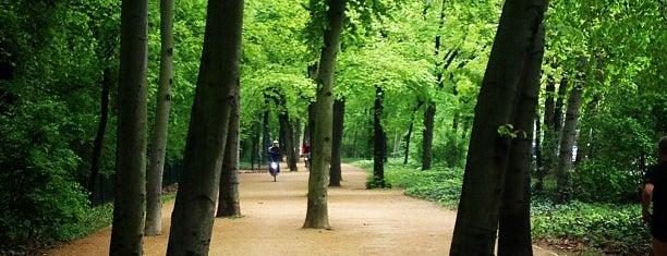Tiergarten is one of Berlin.