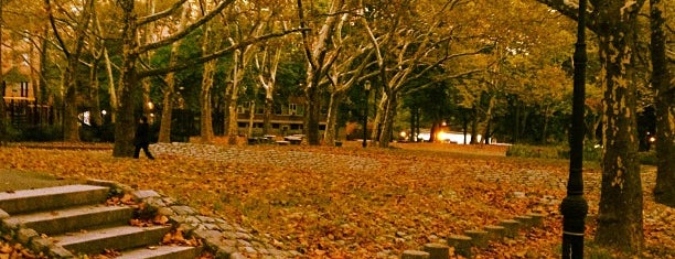 Fort Greene Park is one of Brooklyn.