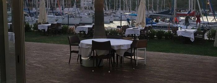 Deniz Restaurant is one of Meyhane.