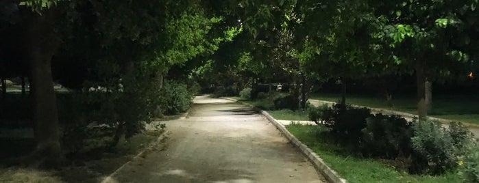 merkez park yürüyüş ve koşu parkuru is one of Locais curtidos por muge.