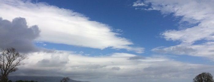 Quinta dos Açores is one of Luis : понравившиеся места.