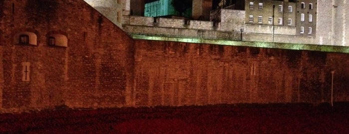 Blood Swept Lands and Seas of Red - Tower of London WW1 Poppy Memorial is one of Locais salvos de Ian.