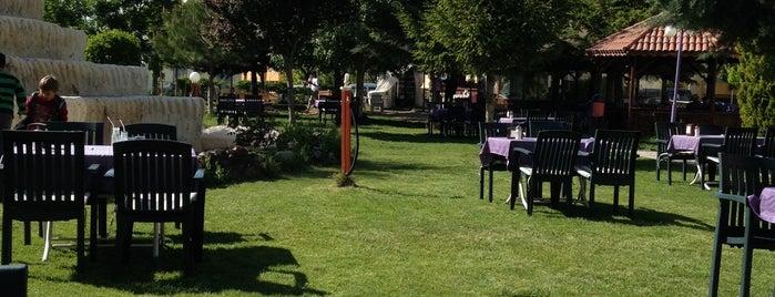 Ergenekon Parkı is one of Orte, die Burak gefallen.