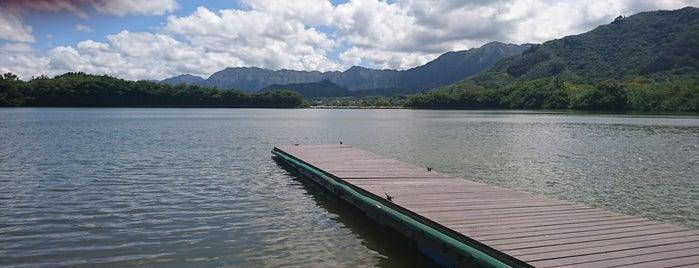 Moli'i Fishpond is one of Tempat yang Disimpan k.K.