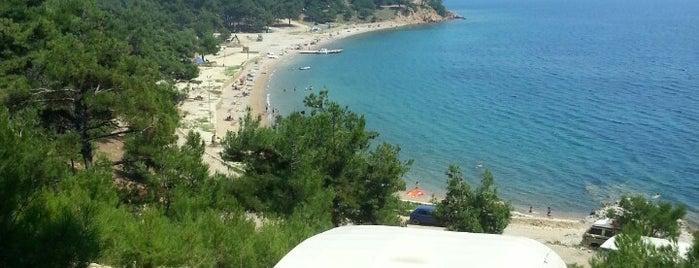 Gökçetepe Tabiat Parkı Plajı is one of Kamping.