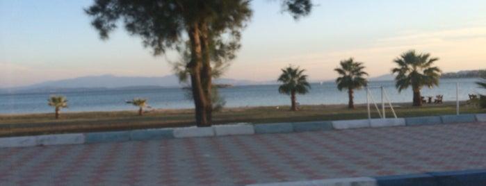 Çandarlı is one of Tempat yang Disukai Yeliz.