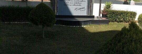 SGK is one of Locais curtidos por Yılmaz.