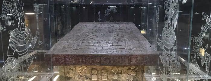 Museo de Sitio Palenque is one of Tempat yang Disukai Alberta.