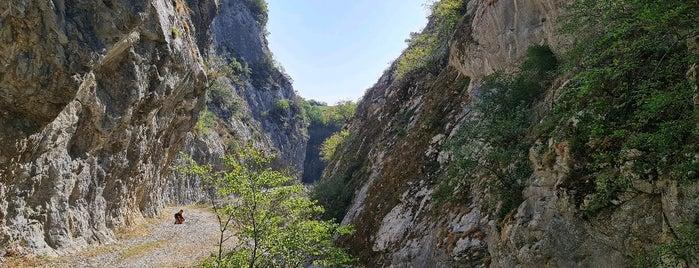 Ulukaya Kanyonu is one of Kastamonu.