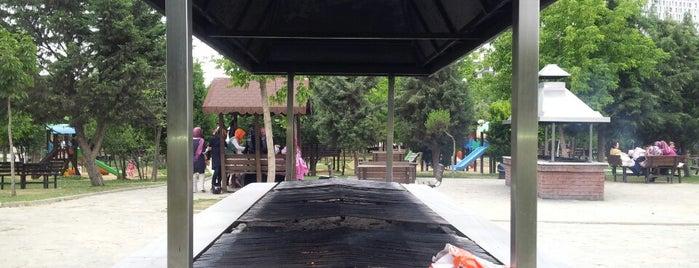 Şehir Korusu Piknik Alanı is one of kaydefilenler.