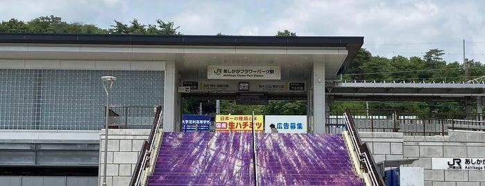 Ashikaga Flower Park Station is one of JR 키타칸토지방역 (JR 北関東地方の駅).