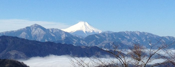 Top of Mt. Takao is one of Orte, die モリチャン gefallen.