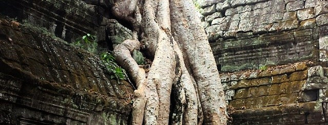 Ta Prohm is one of Far Far Away.