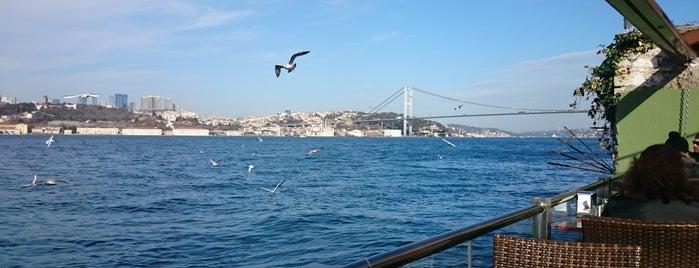 Paşalimanı Kafe is one of Ahmet 님이 좋아한 장소.