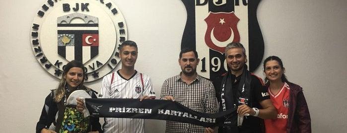 Prizren Beşiktaşlılar Derneği is one of Ahmet : понравившиеся места.