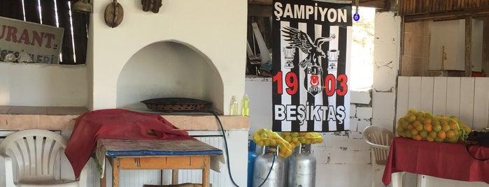 Şahin cafe Restaurant - Market is one of Ahmet : понравившиеся места.