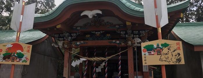 揖宿神社 is one of 西郷どんゆかりのスポット.