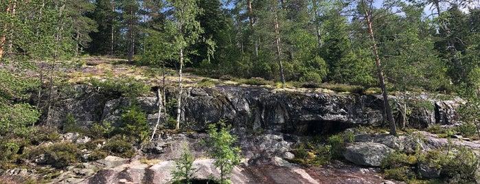 Kolin Kansallispuisto is one of สถานที่ที่ Katariina ถูกใจ.