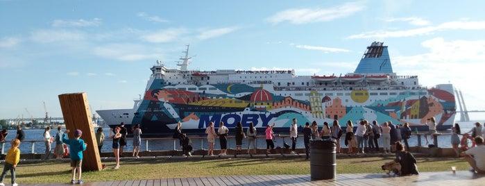 Port Sevkabel is one of St. Petersburg underground/ Неформальный Петербург.