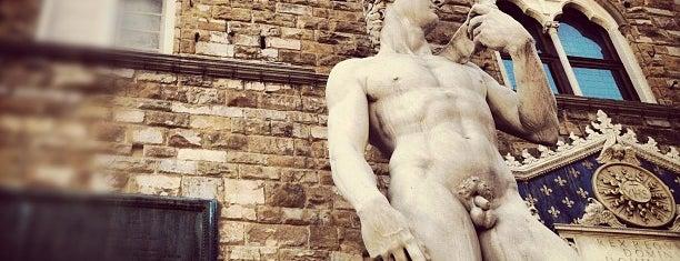 Piazza della Signoria is one of Firenze.