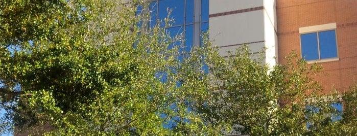 Houston Methodist Sweetwater Pavilion is one of Gregory : понравившиеся места.
