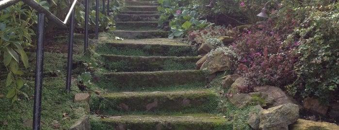 Pemberton Steps is one of Kevin 님이 저장한 장소.