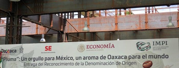 Centro Cultural y de Convenciones de Oaxaca is one of Lieux qui ont plu à Nancy.