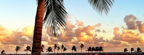 Matheson Hammock Park is one of Miami.