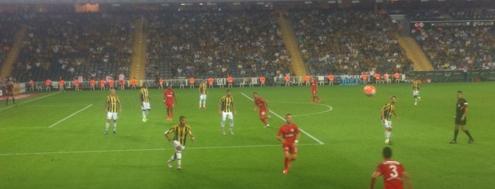 Ülker Stadyumu Fenerbahçe Şükrü Saracoğlu Spor Kompleksi is one of Lieux qui ont plu à Murat.