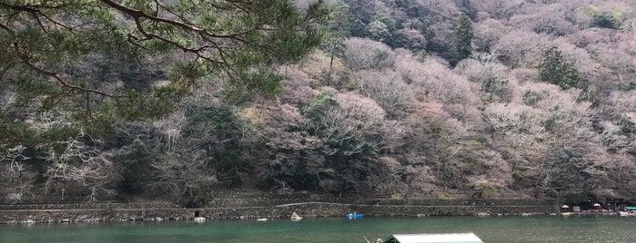 Arashiyama Park is one of Kyoto, Nara, Hiroshima.