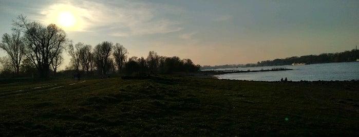Rheinstrand Lörick is one of สถานที่ที่ Carlos Alberto ถูกใจ.