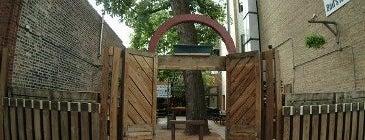 Sheffield's Beer & Wine Garden is one of 16 Best Outdoor Bars In Chicago.