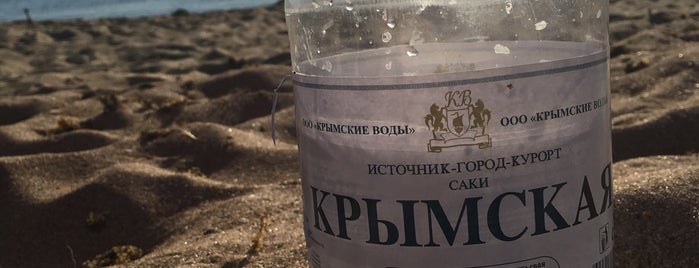 Пляж в Молочном is one of Locais curtidos por Ekaterina.
