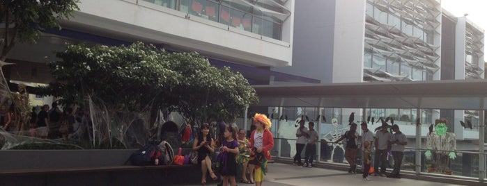 Stamford American International School is one of Singapore: business while travelling part 3.